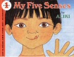 My Five Senses - click to check price or order from Amazon.co.uk